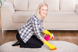finchley carpet cleaning services